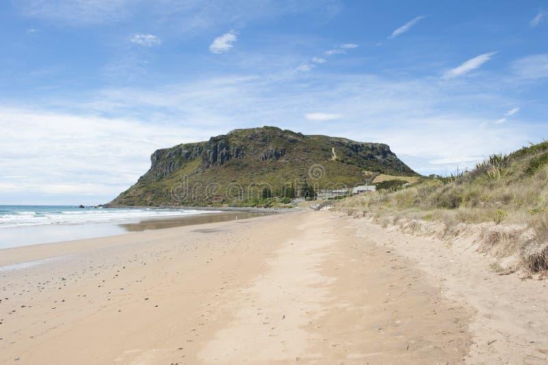 Ορόσημο του Stanley η ακτή Τασμανία απότομων βράχων καρυδιών στοκ εικόνα με δικαίωμα ελεύθερης χρήσης
