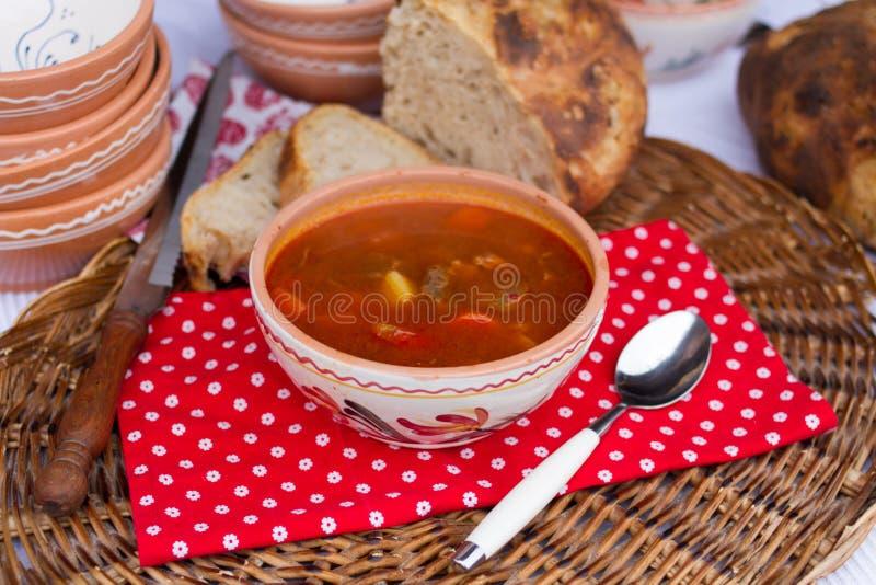 Ουγγρικά παραδοσιακά τρόφιμα, goulash σούπα στοκ φωτογραφίες με δικαίωμα ελεύθερης χρήσης