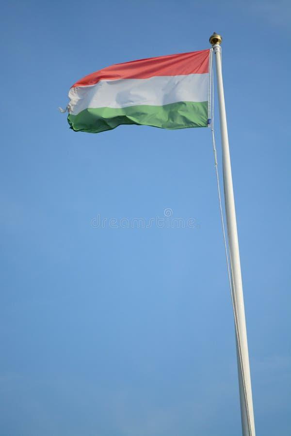 Ουγγρική σημαία στοκ εικόνες