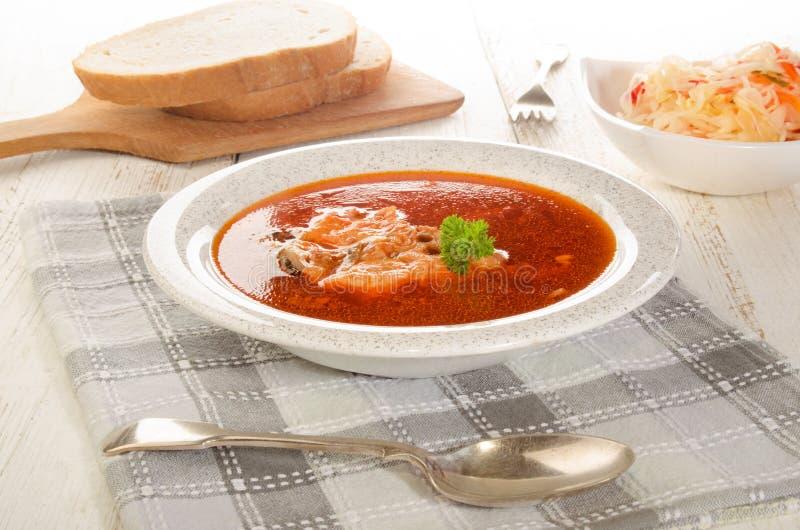 Ουγγρική σούπα ψαριών σε ένα πιάτο, μια σαλάτα και ένα ψωμί σούπας στοκ φωτογραφία με δικαίωμα ελεύθερης χρήσης