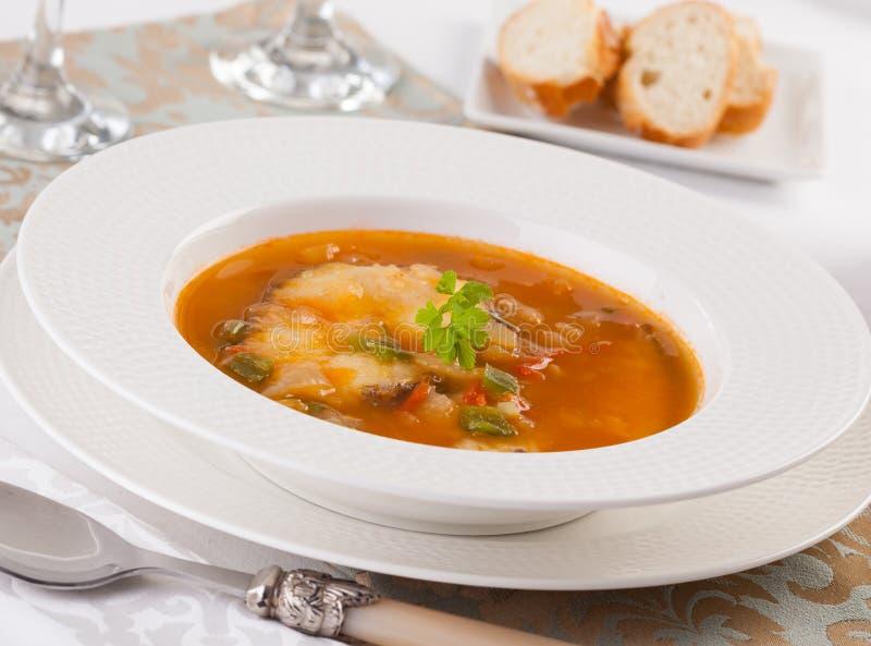 Ουγγρική σούπα ψαριών στοκ εικόνες με δικαίωμα ελεύθερης χρήσης