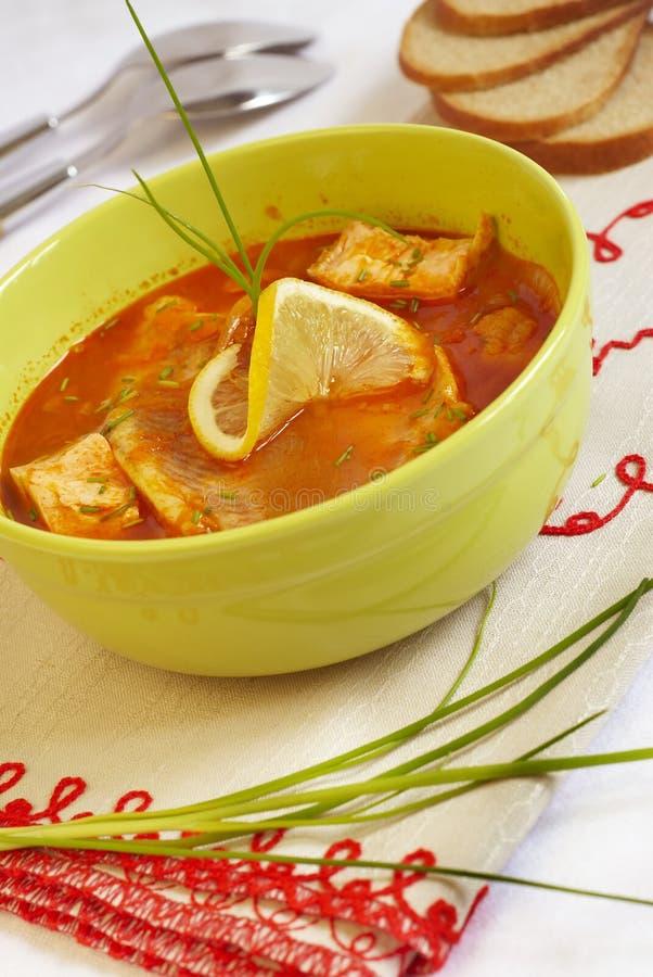 ουγγρική σούπα ψαριών στοκ εικόνες