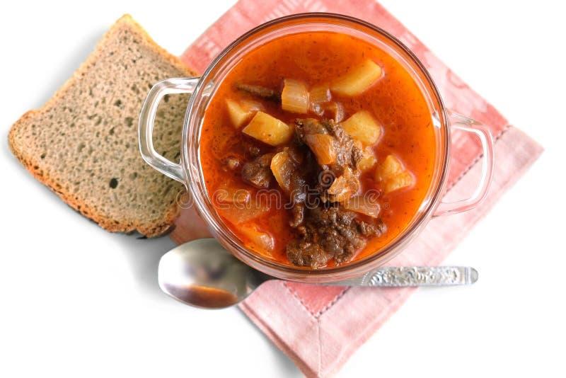 Ουγγρική goulash σούπα στοκ εικόνα