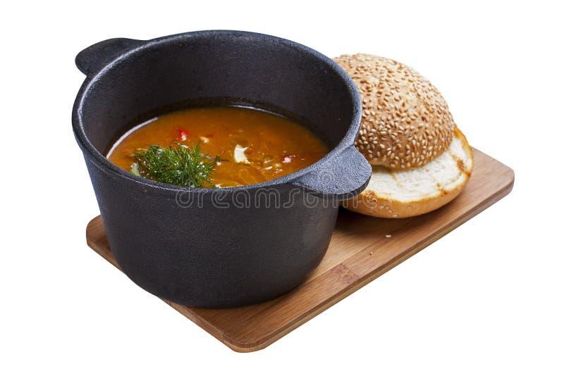 Ουγγρική goulash σούπα στοκ εικόνα με δικαίωμα ελεύθερης χρήσης