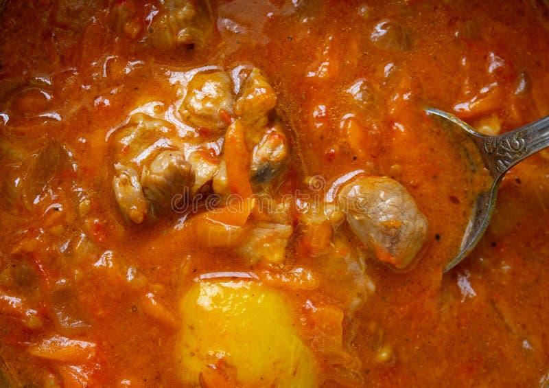 Ουγγρικό πιάτο του κρέατος και της φυτικής κινηματογράφησης σε πρώτο πλάνο στοκ εικόνες