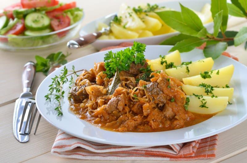 Ουγγρικό goulash στοκ εικόνες με δικαίωμα ελεύθερης χρήσης