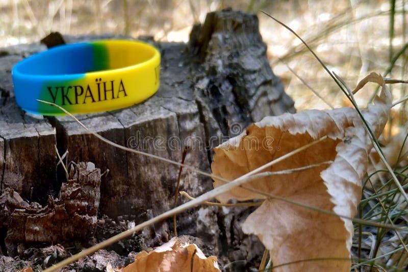 Ουκρανικό βραχιόλι σημαιών σε ένα κολόβωμα στο δάσος στοκ εικόνες
