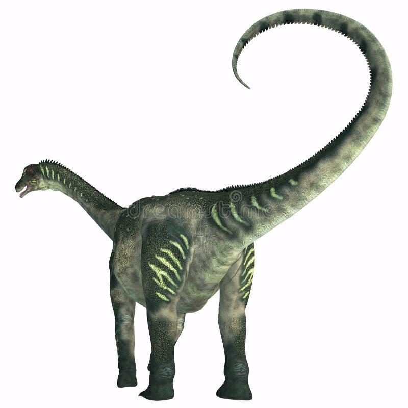 Ουρά δεινοσαύρων Antarctosaurus ελεύθερη απεικόνιση δικαιώματος