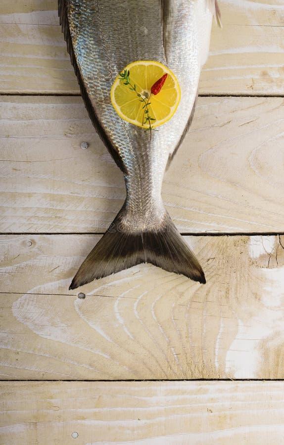Ουρά του φρέσκου dorado με τα καρυκεύματα στοκ φωτογραφία με δικαίωμα ελεύθερης χρήσης