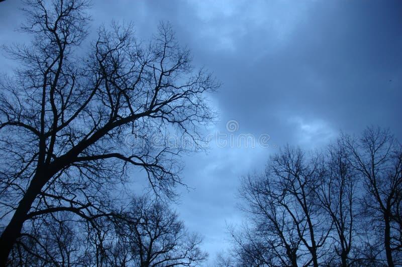 Ουρανοί Coudy στοκ εικόνες με δικαίωμα ελεύθερης χρήσης