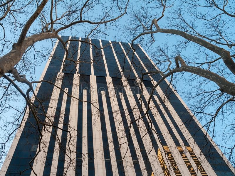 Ουρανοξύστης και δέντρα στοκ φωτογραφίες