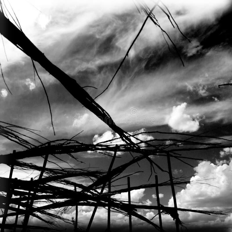 Ουρανός ερήμων στοκ εικόνες