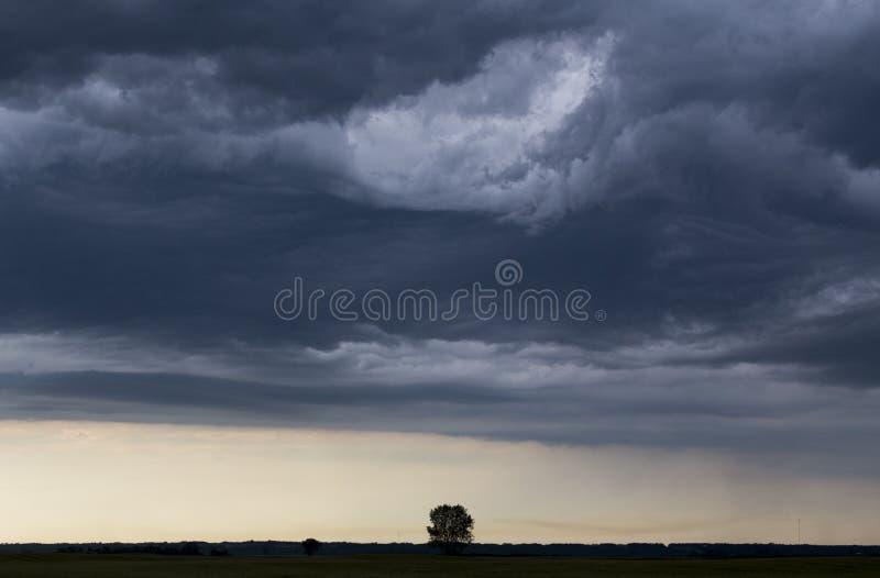 Ουρανός λιβαδιών σύννεφων θύελλας στοκ φωτογραφίες με δικαίωμα ελεύθερης χρήσης