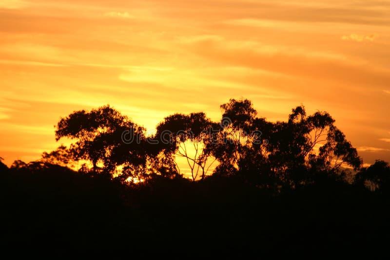 ουρανός πυρκαγιάς στοκ φωτογραφίες