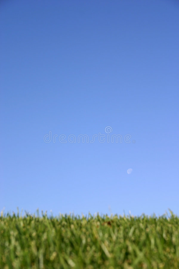 ουρανός χλόης στοκ φωτογραφίες