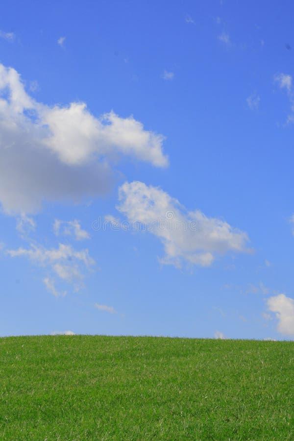 ουρανός χλόης στοκ φωτογραφία