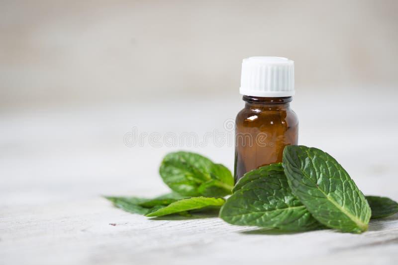 Ουσιαστικό πετρέλαιο της μέντας με τα φύλλα μεντών στοκ εικόνα με δικαίωμα ελεύθερης χρήσης