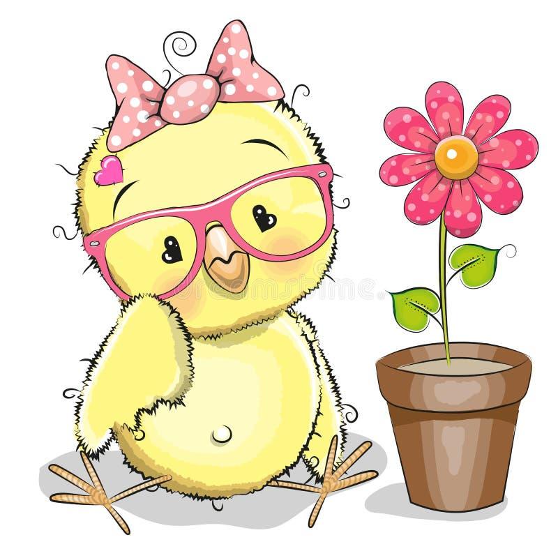 λουλούδι κοτόπουλου ελεύθερη απεικόνιση δικαιώματος