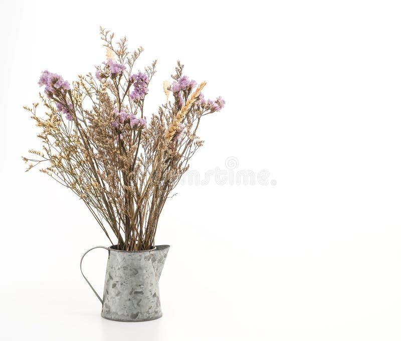 λουλούδι statice και caspia στο βάζο στοκ εικόνα με δικαίωμα ελεύθερης χρήσης