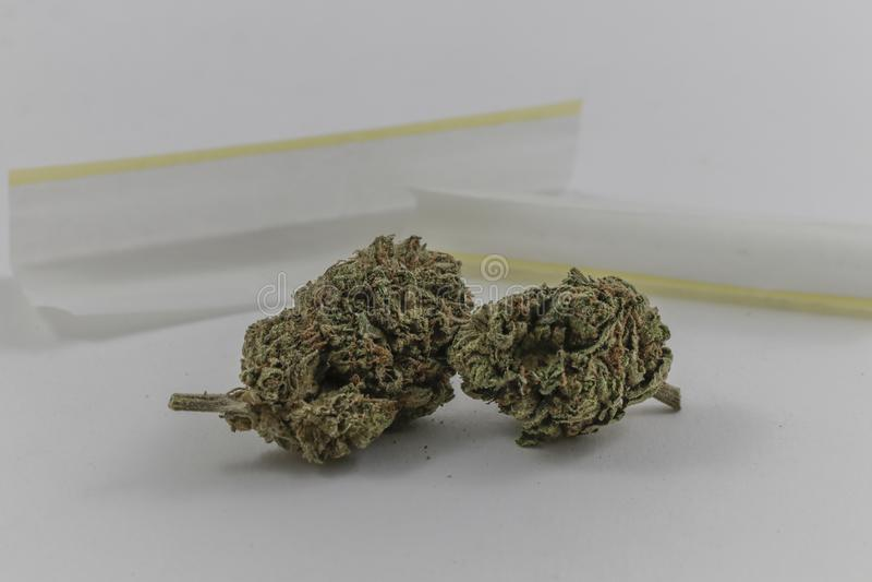 Οφθαλμοί μαριχουάνα με τα κυλώντας έγγραφα στοκ εικόνα με δικαίωμα ελεύθερης χρήσης