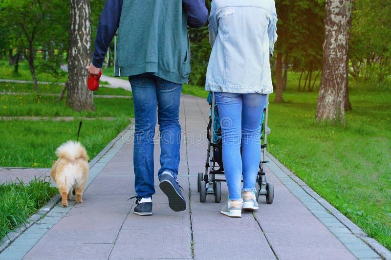 Ο άνδρας και μια γυναίκα με ένα παιδί και ένα σκυλί περπατούν στο πάρκο στοκ φωτογραφίες με δικαίωμα ελεύθερης χρήσης
