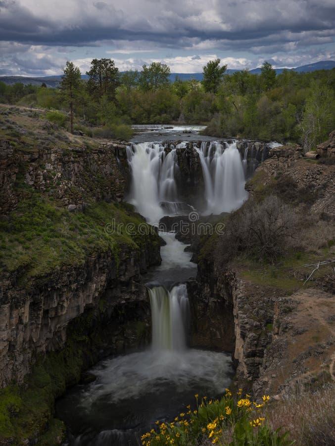 Ο άσπρος ποταμός πέφτει την άνοιξη στοκ εικόνες