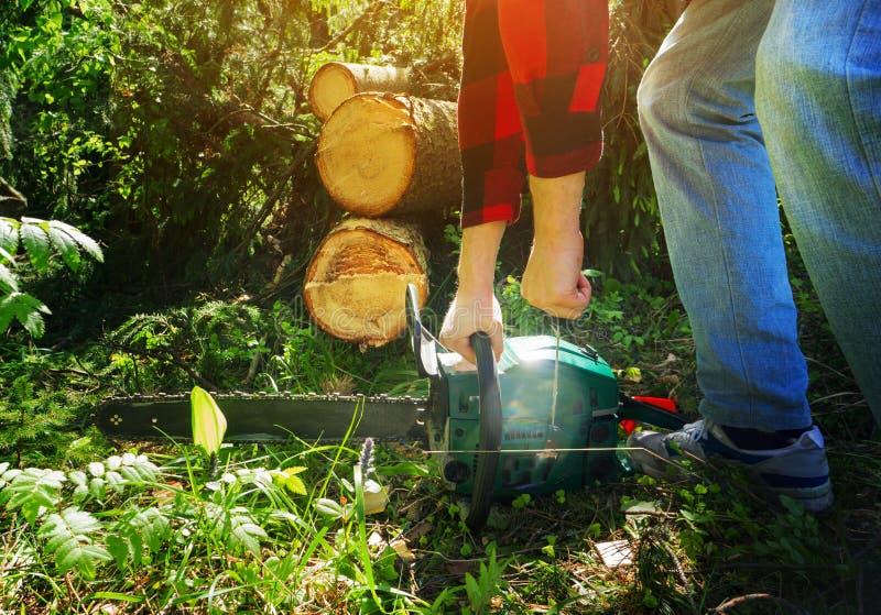 Ο έμπορος ξυλείας σε ένα κόκκινο ελεγμένο πουκάμισο κρατά ότι ένα αλυσιδοπρίονο πρόκειται να τον αρχίσει, ενάντια στο δάσος στοκ εικόνα με δικαίωμα ελεύθερης χρήσης