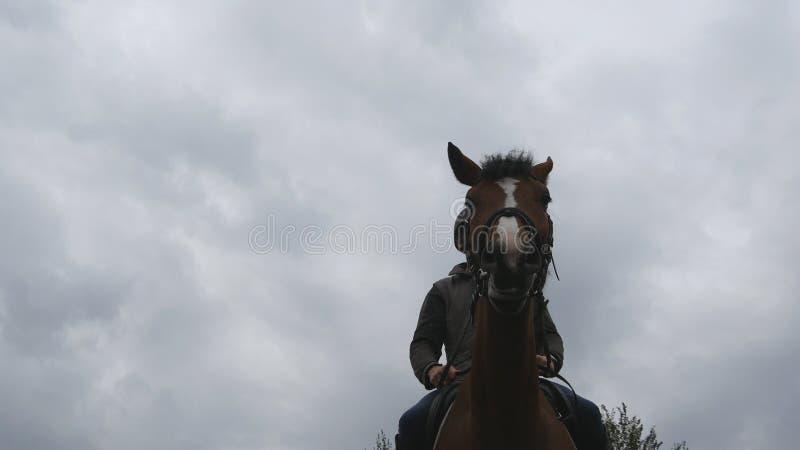 Οδήγηση πλατών αλόγου νεαρών άνδρων υπαίθρια Αρσενικό jockey που οδηγά ένα άλογο στη σκοτεινή νεφελώδη ημέρα Όμορφος βροχερός ουρ στοκ εικόνα με δικαίωμα ελεύθερης χρήσης