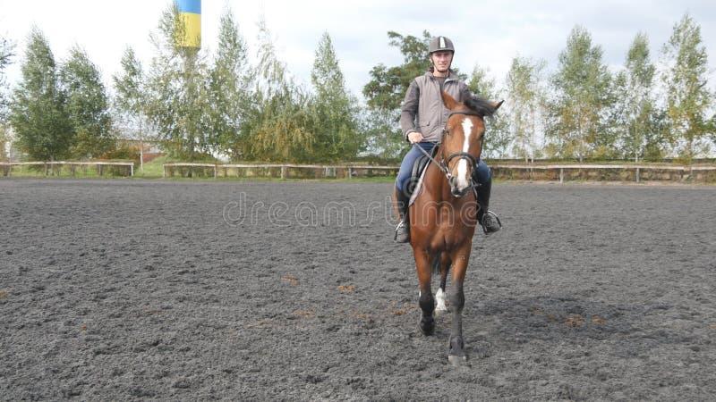 Οδήγηση πλατών αλόγου νεαρών άνδρων υπαίθρια Αρσενικό jockey στο άλογο που περπατά στο manege στο αγρόκτημα τη σκοτεινή νεφελώδη  στοκ φωτογραφίες
