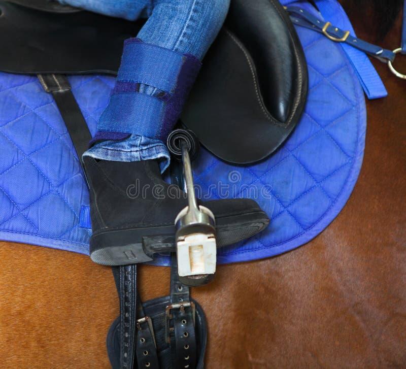 Οδήγηση πλατών αλόγου. το μικρό κορίτσι οδηγά ένα άλογο στοκ εικόνες