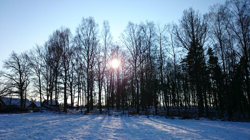 ο ήλιος λάμπει στοκ εικόνες με δικαίωμα ελεύθερης χρήσης