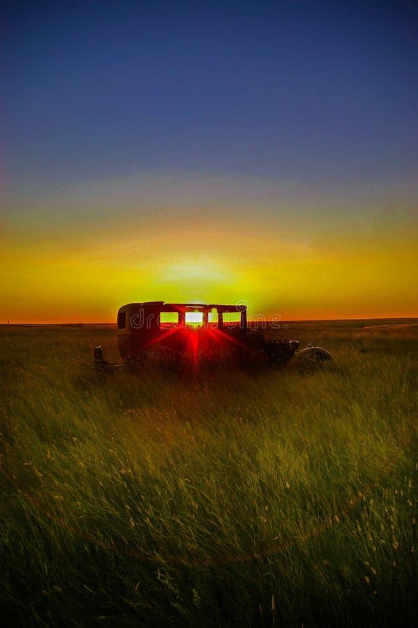 Ο ήλιος λιβαδιών ρύθμισης στοκ εικόνα με δικαίωμα ελεύθερης χρήσης