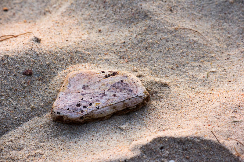 Ο λίγος βράχος στοκ φωτογραφίες
