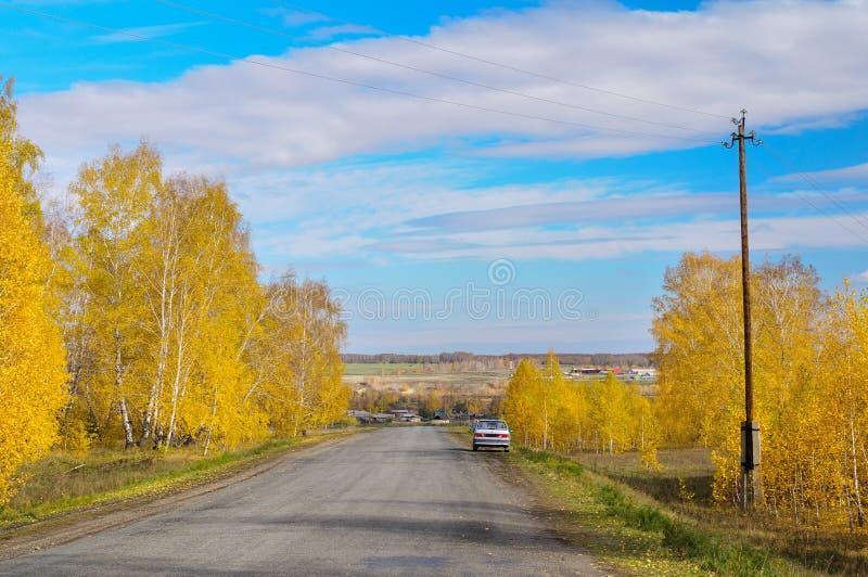 Ο αγροτικός δρόμος φθινοπώρου πηγαίνει ομαλά κάτω στοκ εικόνα