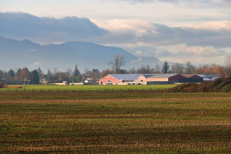 Ο αγροτικός χειμώνας σκιάζει το τοπίο στοκ εικόνες με δικαίωμα ελεύθερης χρήσης