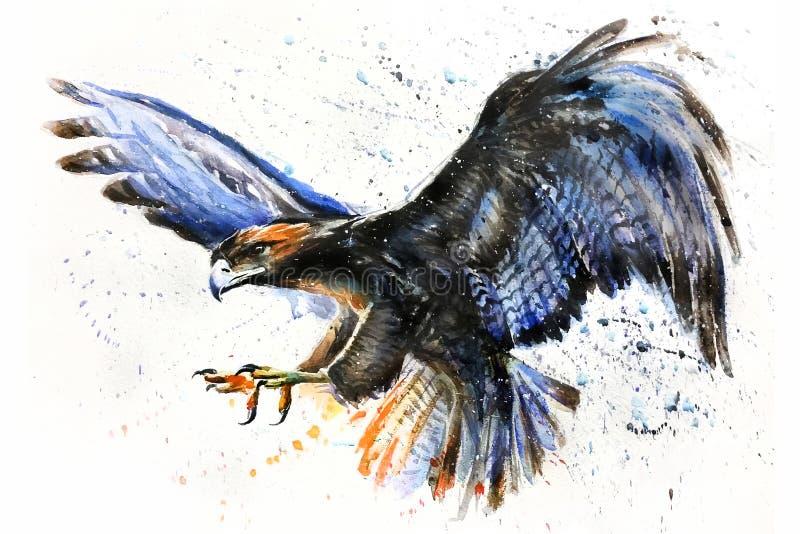 Ο αετός ν η άγριας και ελεύθερης watercolor ζωηρόχρωμη ζωγραφική ουρανού, άγριο αρπακτικό ζώο, κυνηγός βασιλιάδων στοκ εικόνες