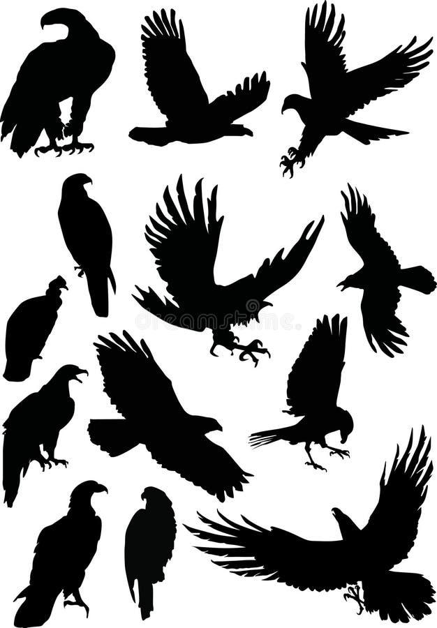 ο αετός σκιαγραφεί δέκα &tau διανυσματική απεικόνιση