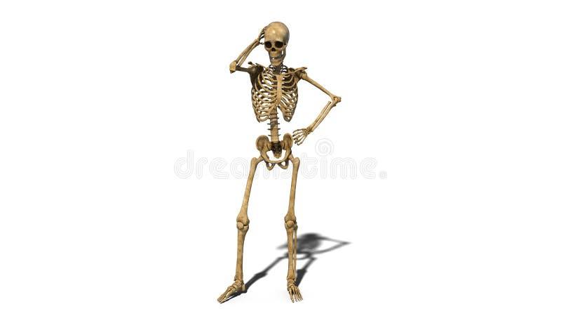 Ο ανησυχημένος σκελετός που σκέφτεται, ανθρώπινος σκελετός που απομονώνεται στο άσπρο υπόβαθρο, τρισδιάστατο δίνει διανυσματική απεικόνιση