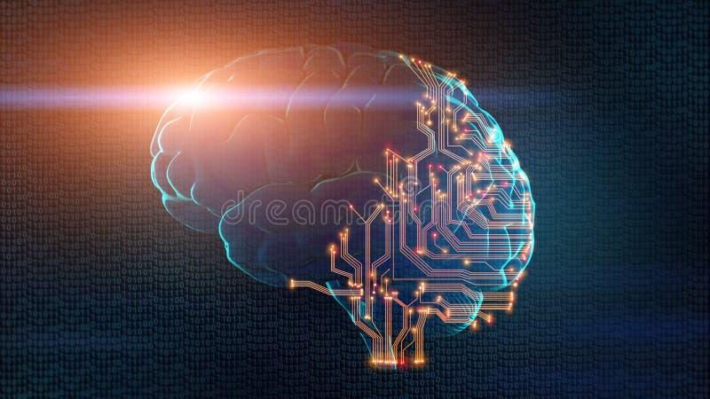 Ο ανθρώπινος εγκέφαλος αποτελείται μερικώς από τον πίνακα κυκλωμάτων στοκ εικόνα με δικαίωμα ελεύθερης χρήσης