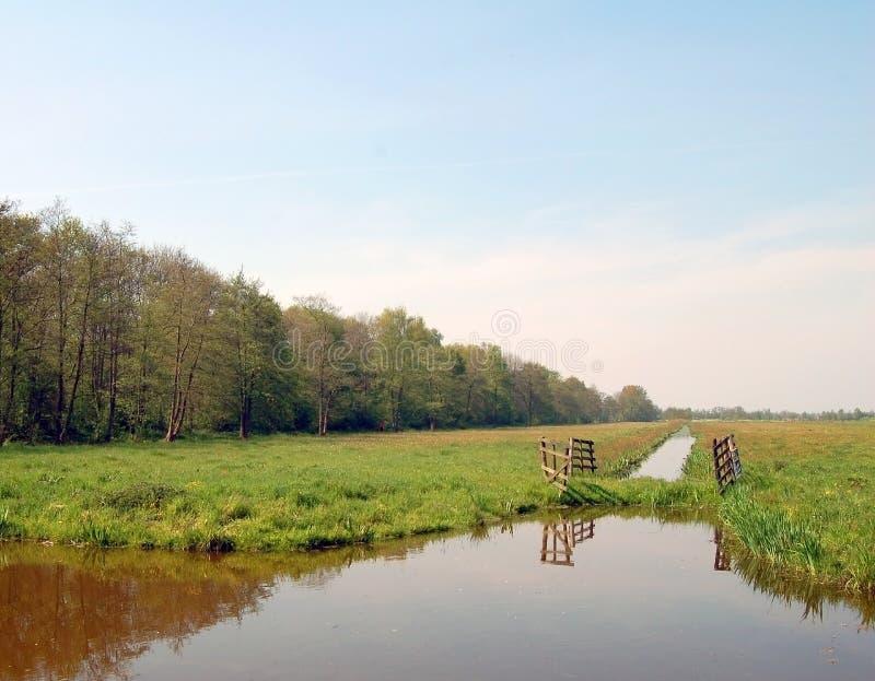 Download Ολλανδικό επίπεδο λιβάδι τοπίων με τα δέντρα και τις τάφρους Στοκ Εικόνα - εικόνα από χλόη, ουρανός: 62723695