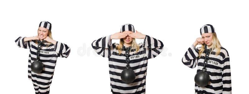 Ο αστείος τρόφιμος φυλακών στην έννοια στοκ εικόνα