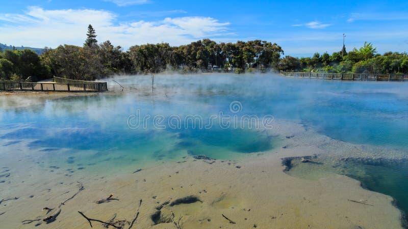 Ο ατμός αυξάνεται από μια γεωθερμική λίμνη στο πάρκο Kuirau, Rotorua, Νέα Ζηλανδία στοκ εικόνα