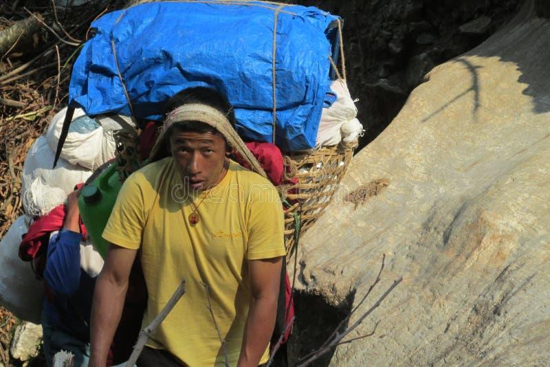 Ο αχθοφόρος Sherpa φέρνει το καλάθι στην πορεία οδοιπορίας του Νεπάλ στοκ φωτογραφία