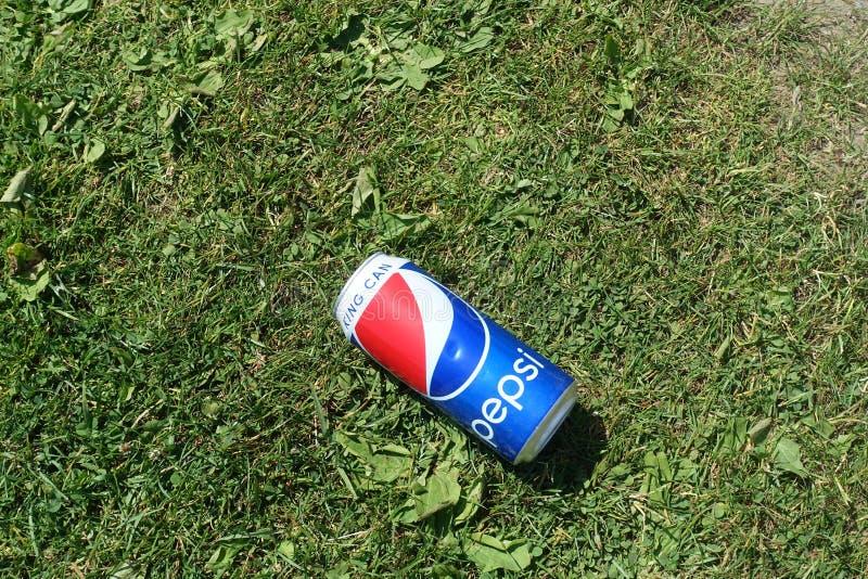 Ο βασιλιάς κινηματογραφήσεων σε πρώτο πλάνο μπορεί Pepsi βάζοντας στη χλόη στοκ φωτογραφία με δικαίωμα ελεύθερης χρήσης