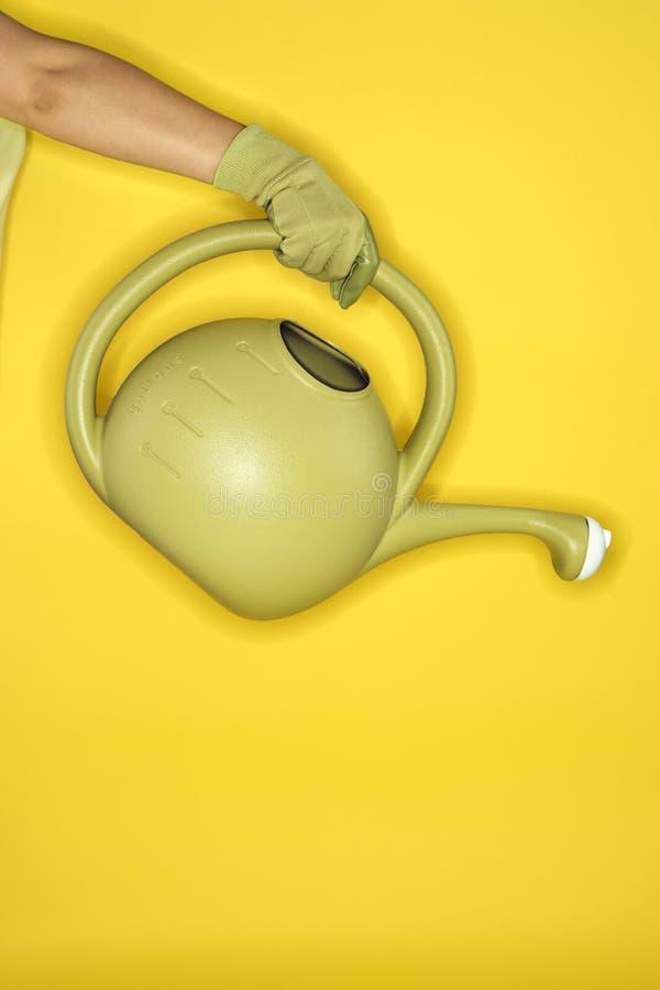 ο βραχίονας μπορεί ποτίζοντας γυναίκα εκμετάλλευσης s στοκ φωτογραφία με δικαίωμα ελεύθερης χρήσης