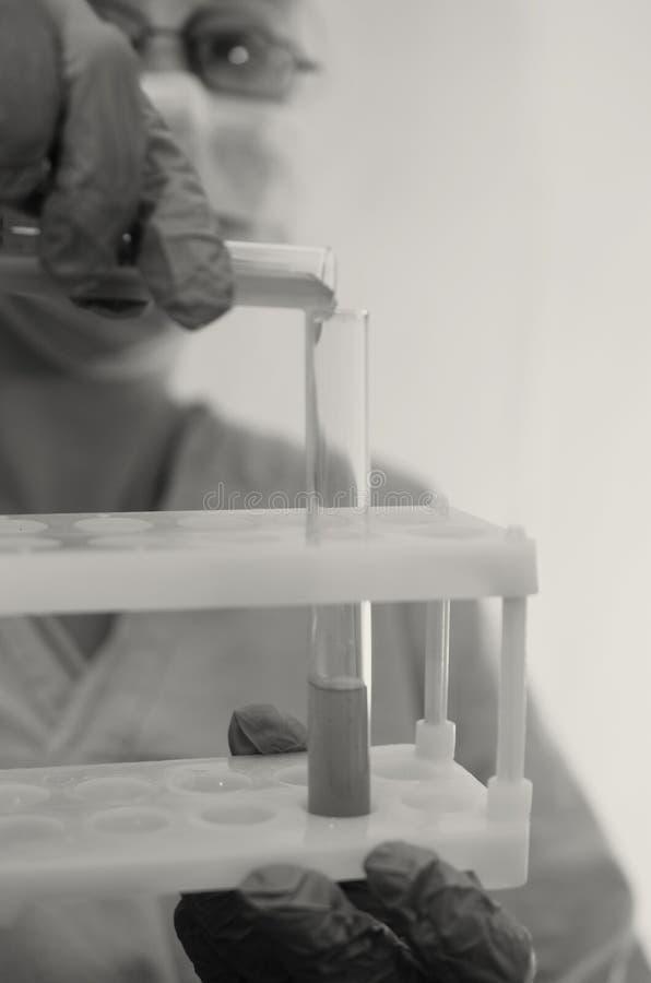 Ο γιατρός κάνει τις δοκιμές με ένα βιολογικό ρευστό στοκ εικόνα