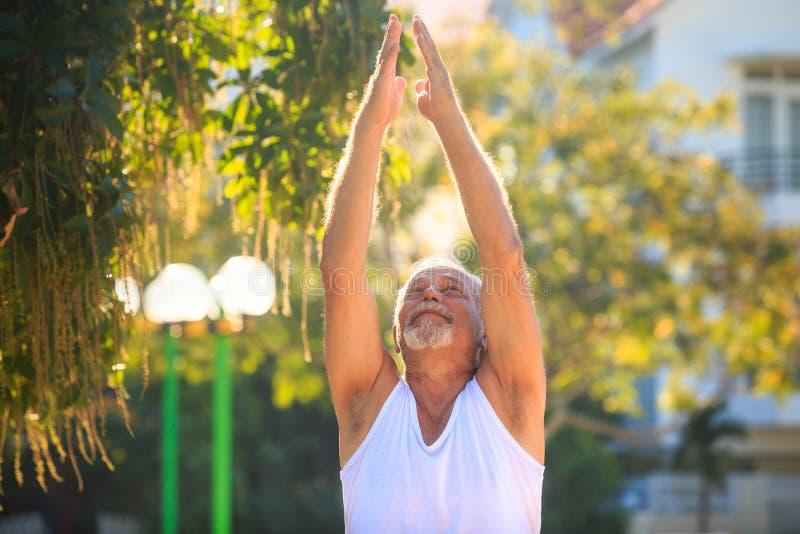 Ο γκρίζος γενειοφόρος ηληκιωμένος στη φανέλλα ανυψώνει τα χέρια ανατρέχει στο πάρκο στοκ εικόνα με δικαίωμα ελεύθερης χρήσης