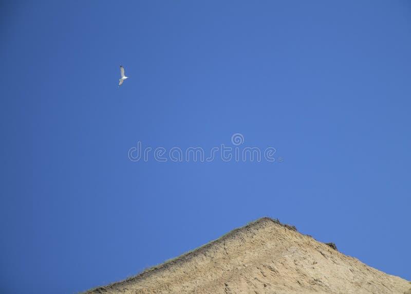 Ο γλάρος που πετά στον μπλε ηλιόλουστο ουρανό πέρα από την εδαφολογική θραύση αργίλου άμμου Simbol μινιμαλισμού και ελευθερίας στοκ εικόνα με δικαίωμα ελεύθερης χρήσης
