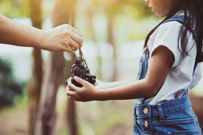 Ο γονέας δίνει τη δέσμη των κόκκινων σταφυλιών που συγκομίζονται από το themselve από κοινού στοκ φωτογραφία με δικαίωμα ελεύθερης χρήσης