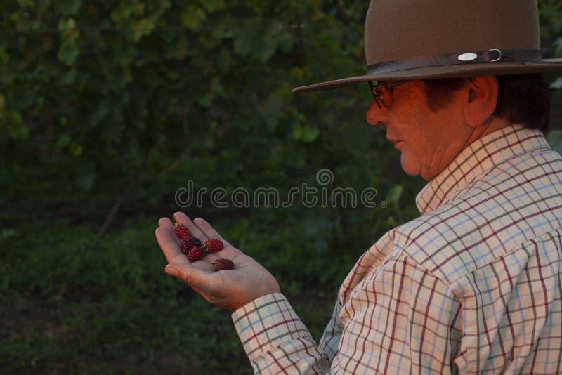 Ο γυναικείος ` s αγρότης με ένα καπέλο κρατά το βατόμουρό της στο χέρι της στοκ εικόνα